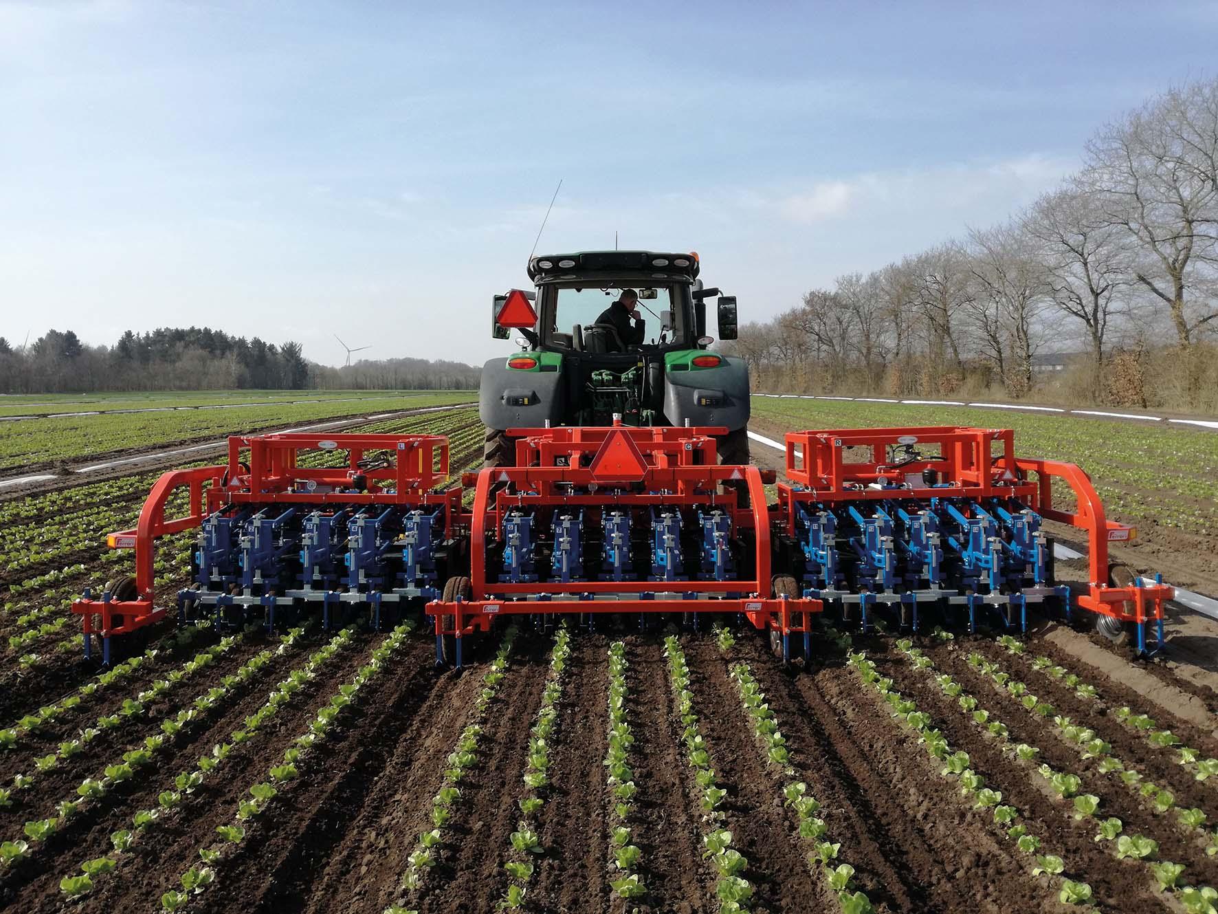 15 lines Ferrari automated weeder - Agri Machines World